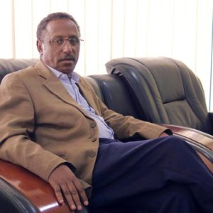 The Amhara National Democratic Movement's business empire