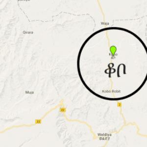 Seven killed at Kobo protest
